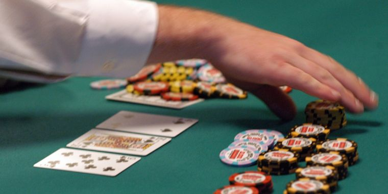 Cats Dogs and Online Casino